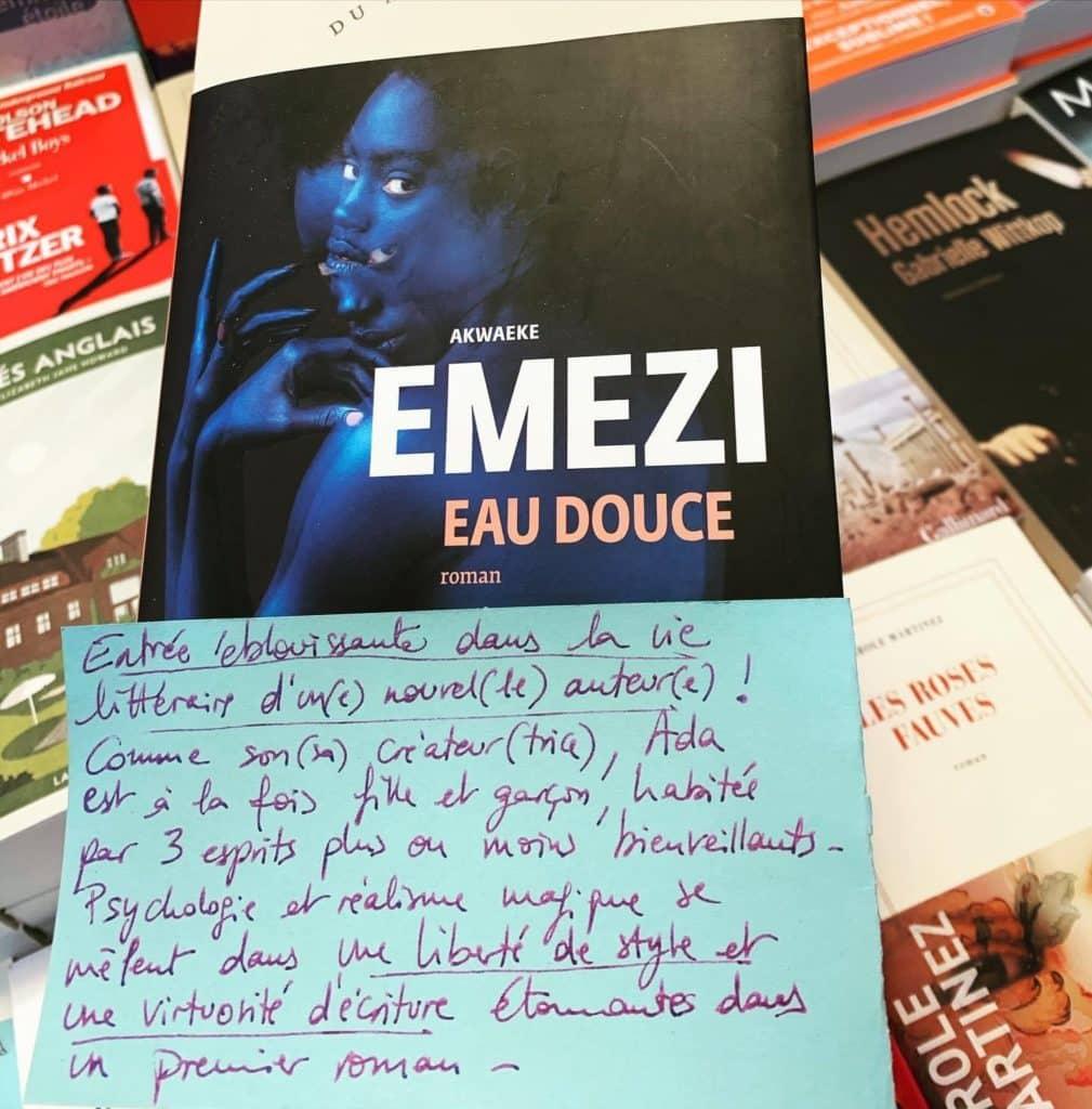 Akwaeke Emezi, Eau douce