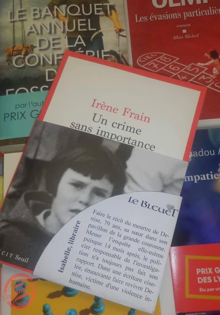 Irène Frain, Un crime sans importance